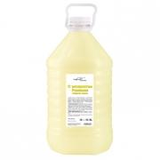 Жидкое мыло Эконом в ПЭТ канистре 5 литров