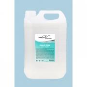 Мыло- пена в пластиковой канистре 5 литров